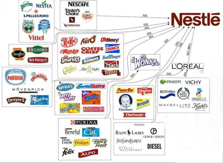 neslte-products-768x562
